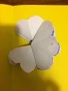 Prendere il cartoncino colorato, piegarlo a metà, mettere la colla come da tratteggio (su entrambe le parti), appoggiare i fiori all'interno del cartoncino e chiudere il biglietto.